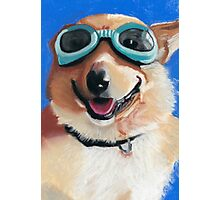 Corgi in Goggles Photographic Print