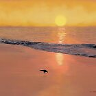Bird On The Beach by Tim Stringer