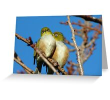 Ahhh!!! A Little More To The Left!!!! - Silver-Eyes - NZ Greeting Card