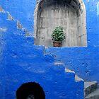 Escaleras Azul by Garrett Santos