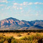 Chiricahua Mountains by Winona Sharp