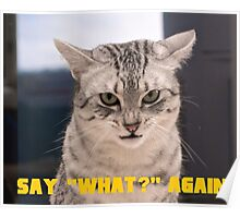 """Say """"What?"""" again, Meow Edition! Poster"""