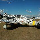 FW-190 by muz2142