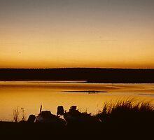 Morning dawns over the Zambezi by bertspix