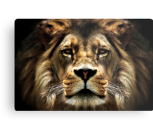 The Lion, the witch..... Metal Print