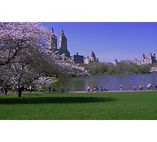 Springtime in the Park Photographic Print