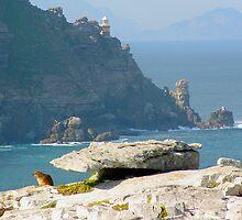 Rock Mouse by Mishka Góra