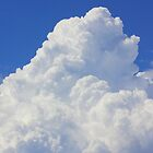 Fluffy clouds by Kerry  Hill