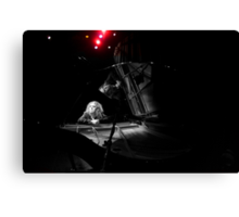 Tim Minchin - Black & Whites Canvas Print