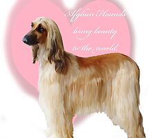 Afghan Hound with heart by IowaArtist