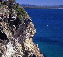 Bennett Head Lookout, Forster, Australia 2000 by muz2142