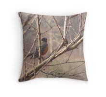 robin view Throw Pillow