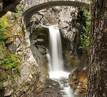 Christine Falls by Patricia Betts