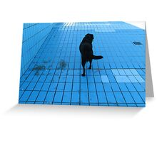 DOG IN THE POOL  Greeting Card