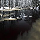 Winter landscape with river by Romeo Koitme