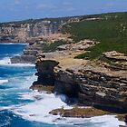 marley views, national park - sydney by Courtney Goddard