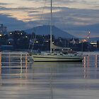 Hobart Boat by WhitCanberra