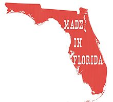 Made in Florida by surgedesigns