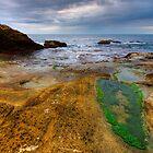 Wild beach by Patrick Morand