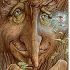 Old Wisebark by JamesBrowneArt