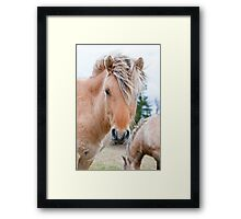 Hey There Framed Print