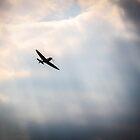Spitfire  by paulmuscat