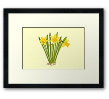 Beautiful Daffodils Framed Print
