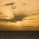Sunset by Igor Janicijevic