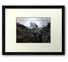 A Wild Stallion Framed Print
