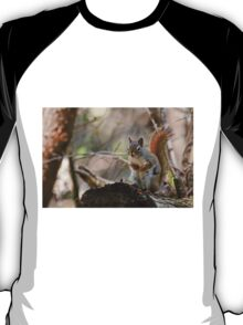 Red Squirrel - Ottawa, Ontario T-Shirt