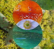 mind's eye by Finnian Wilder