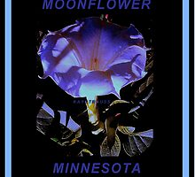 MOONFLOWER by kaystrauss