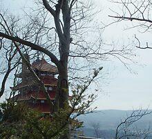Pagoda in Reading, PA by Judi Taylor