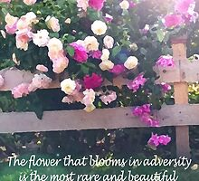 The Flower that Blooms in Adveristy by Hschill