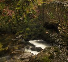Aira Force by Anna Ridley