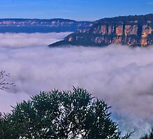 Grand View  Wentworth Falls  Blue Mtns by Warren. A. Williams