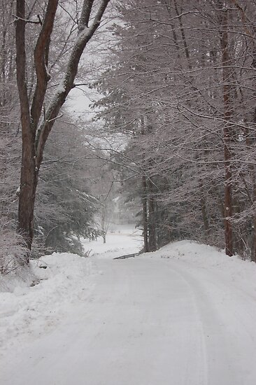 Rural Road in Snow Storm by Sarah McKoy