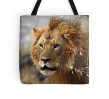 Cat: Large Male Lion Looking Intently as He Comes Out of the Bush, Maasai Mara, Kenya  Tote Bag