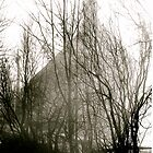 Fogged-in Religion by bengel