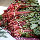 Rhubarb by randomoasis