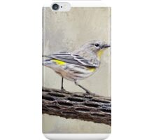 Yellow-throated Vireo iPhone Case/Skin