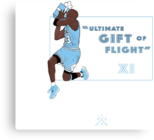 "Ultimate Gift Of Flight ""Pantone"" XI Canvas Print"