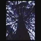 Purple Tree by Sarah Donoghue