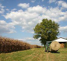 Farm Life by Patricia Montgomery
