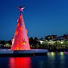 Geelong Christma tree by Hans Kawitzki