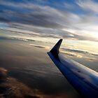 Flying high by rebecca3