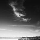 Jamison Mist by Will Barton