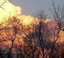 I admire the sky by kaylarenee
