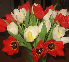 Tulips by thelarsons