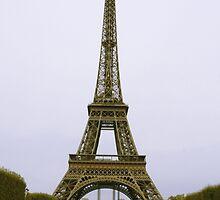 Eiffel Tower  by trulyshannon